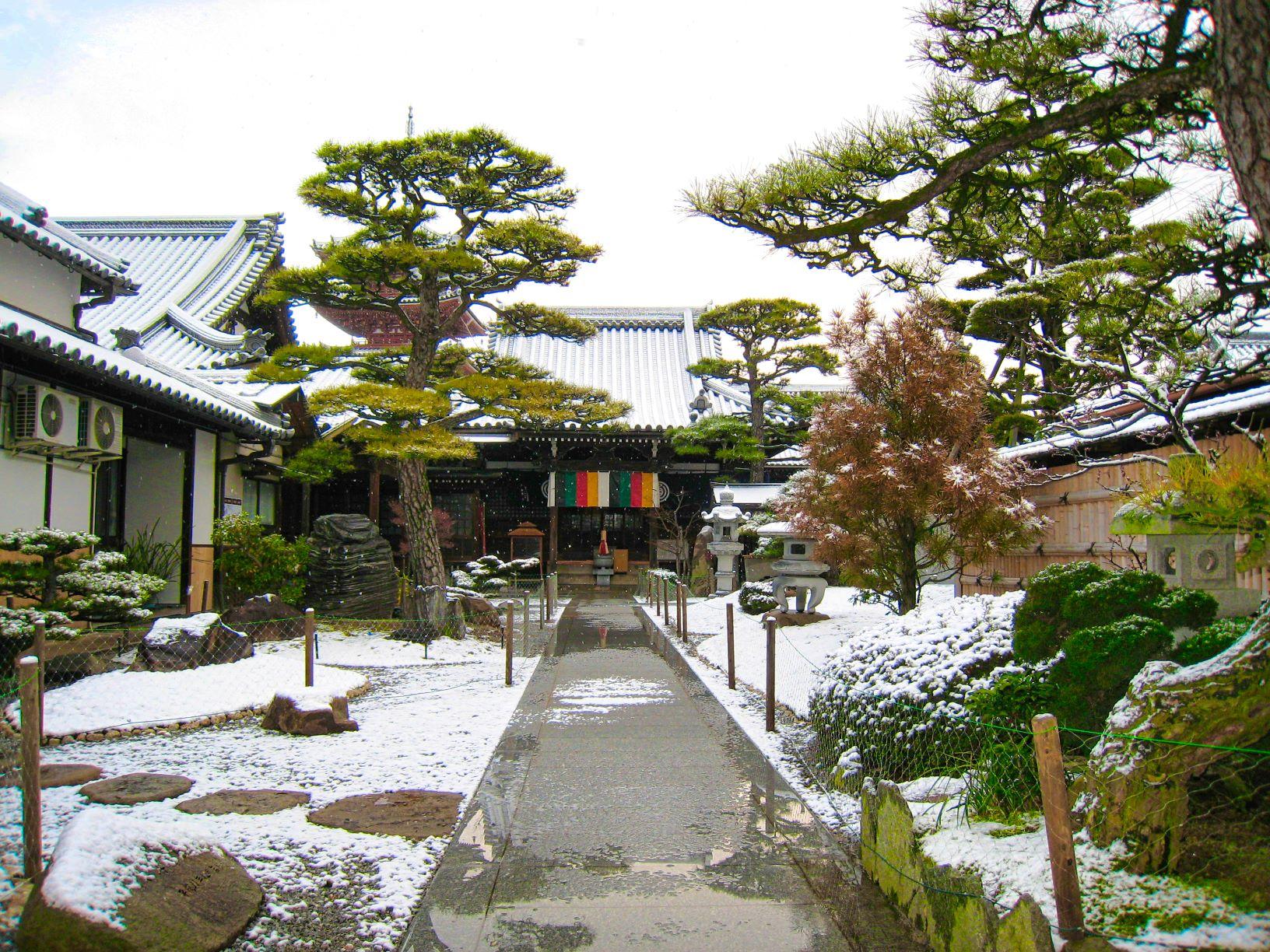 雪化粧した圓通寺