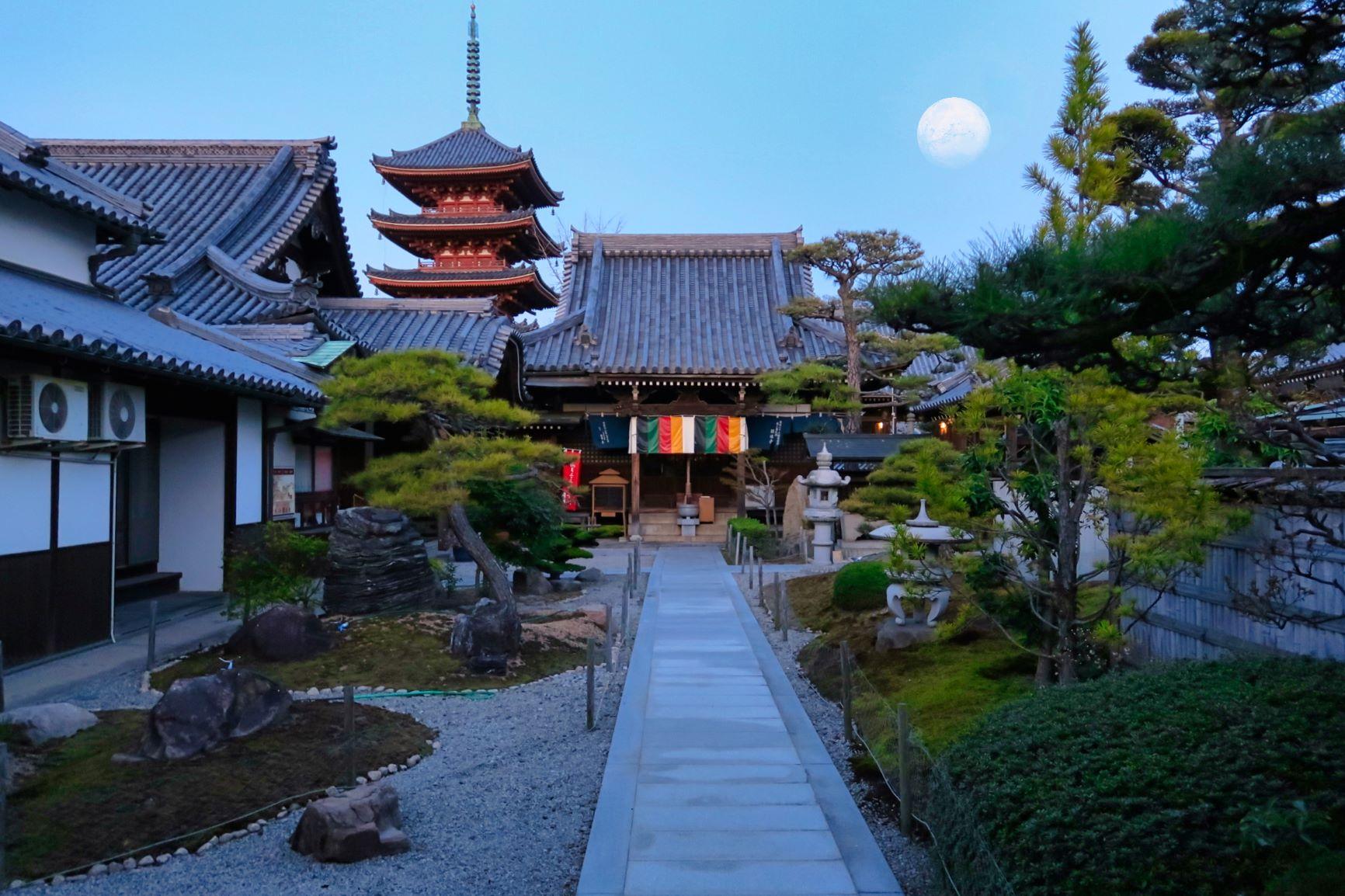 圓通寺本堂と月